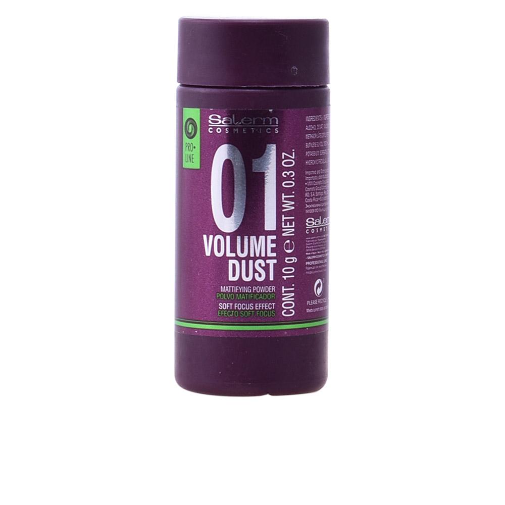 Salerm Volume Dust Matifying Powder 10 Gr