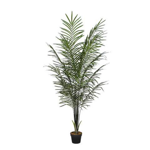 Artificial Areca Palm Black Trunks 190 Cm 1 item