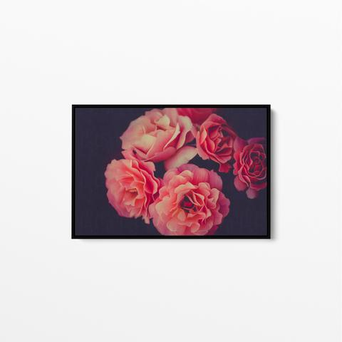 A Twist Of Fate - Navy and Pink Rose Artwork Stretched Canvas Wall Art Large